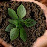 Unser nachhaltiges und soziales Engagement