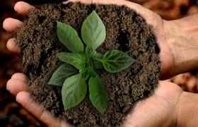 Teaser für Nachhaltigkeit der SHH-Personalberatung
